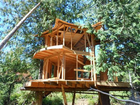 tree house kits prefabricated tree house home design