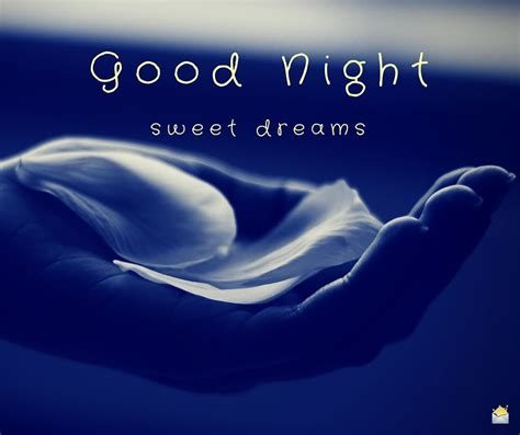 Sweet Dreams by Amazing Images