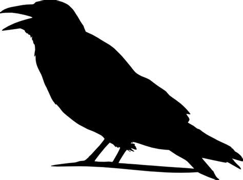 crow clip art at clker com vector clip art online