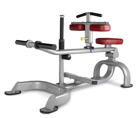 seated calf press seated calf bench by bh fitness chandler sports
