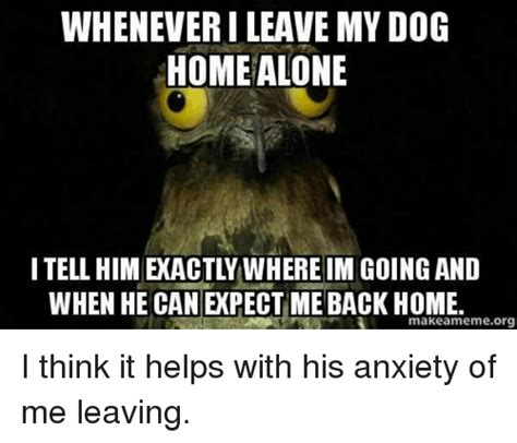 leaving home alone whenever i leave my home alone when he can expect me back home makeamemeorg i