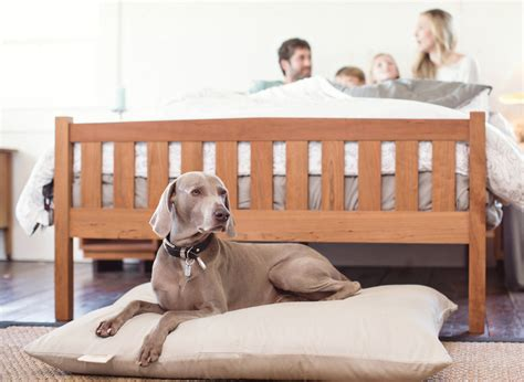 organic dog beds natural furniture natural bedroom furniture natural accent furniture the futon shop
