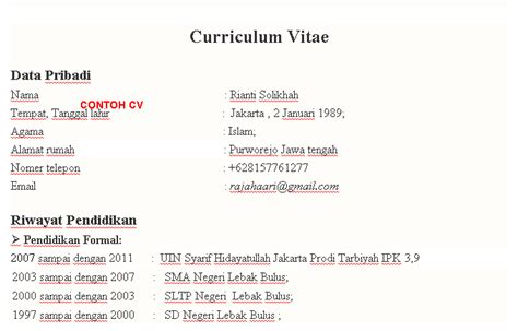 format curriculum vitae untuk narasumber curriculum vitae wikipedia newhairstylesformen2014 com