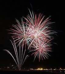 fiori di bach x cani i fiori di bach per la paura dei fuochi d artificio nel