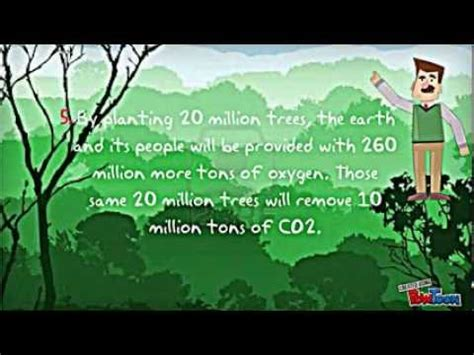 10 facts about trees youtube