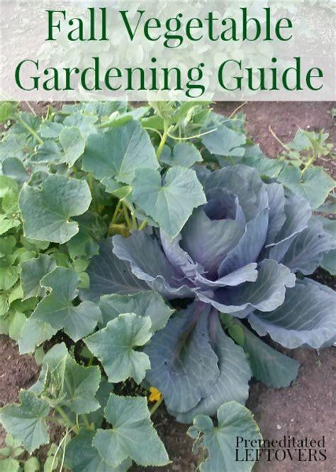 fall vegetable garden ideas fall vegetable gardening tips dan330