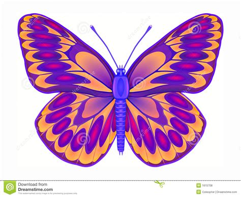 color drawings butterfly colourful butterfly pencil and in color