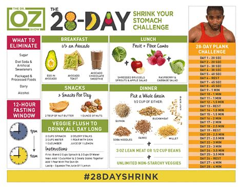 28 Day Sugar Detox Challenge by The 28 Day Shrink Your Stomach Challenge