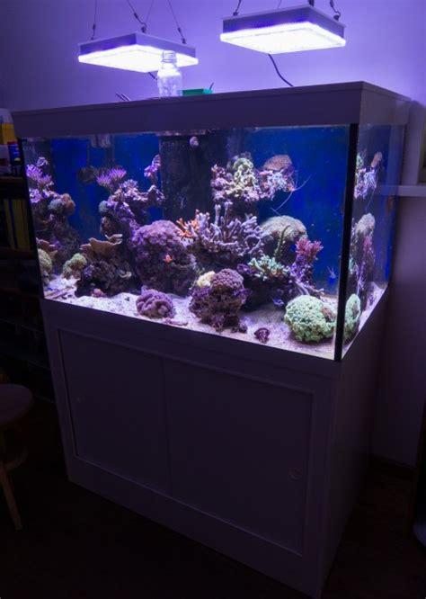orphek led lighting for sale frode s reef aquarium orphek
