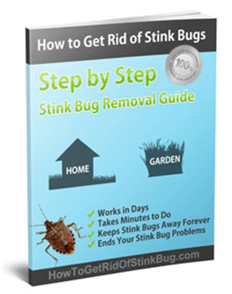 how to get rid of backyard bugs download the complete guide to eliminating stink bugs