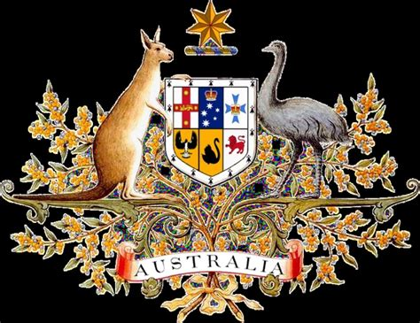 1000 ideas about australian coat of arms on pinterest