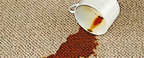 aprenda como limpiar las alfombras en casa
