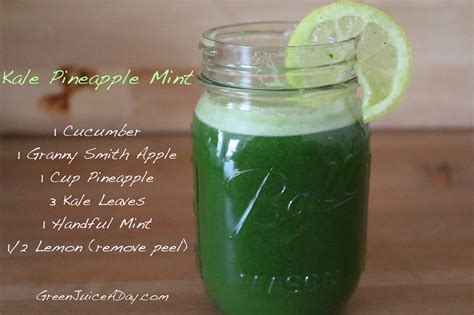 Kale Juice Detox Diet by 5 Green Juice Recipes For Beginners Green Juice A Day