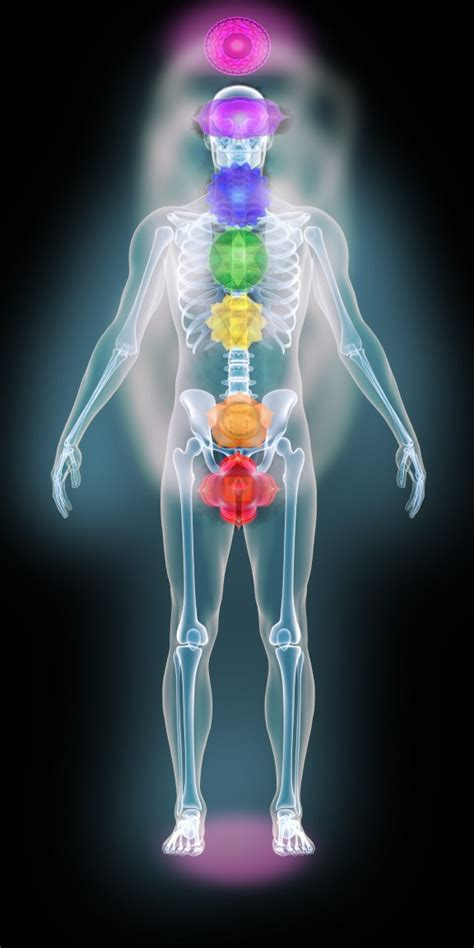 human aura auras chakras energy fields cleansing and activating