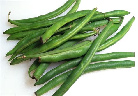 can dogs eat green beans can guinea pigs eat green beans or cooked