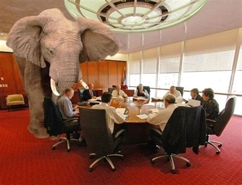 the elephant in the room professional business learning