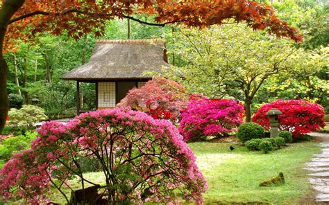 Japanese Flower Garden Japan Flowers Japanese Garden Asian Wallpaper 1920x1200 123241 Wallpaperup