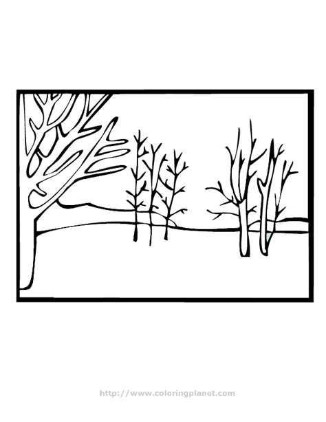 template forrest forest coloring pages coloring pages