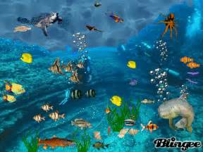 Wall Stickers Fish underwater gif find amp share on giphy