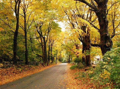 wallpaper free autumn wallpapers beautiful autumn scenery wallpapers