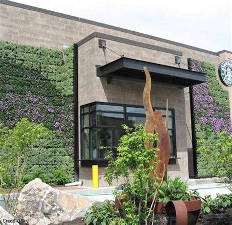 Vertical Gardens Wa Living Green Wall At Starbucks In Seattle Washington