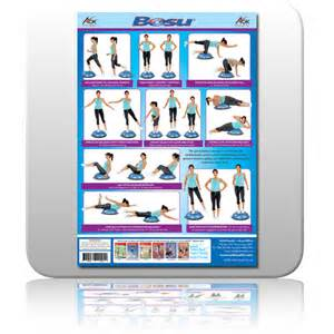 Chair Exercises With Resistance Bands Aok Bosu Wall Chart A2 Laminated Sports Fitness And