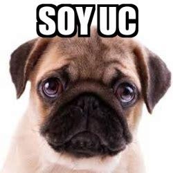 Uc Meme - uc memes 28 images 25 best memes about uc berkeley uc