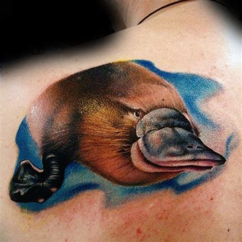 platypus tattoo 50 platypus designs for animal ink ideas