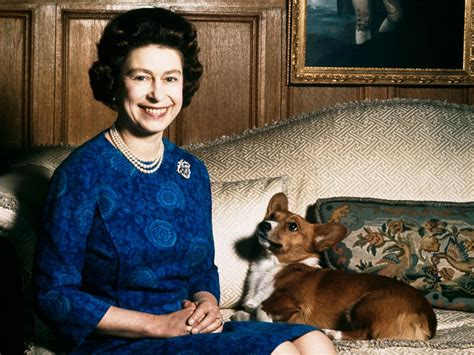 queen elizabeth dog queen elizabeth ii says she will get no more corgis