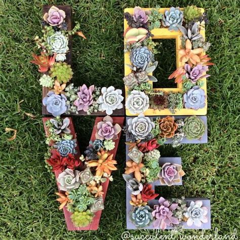 succulents garden ideas creative indoor and outdoor succulent garden ideas 2017