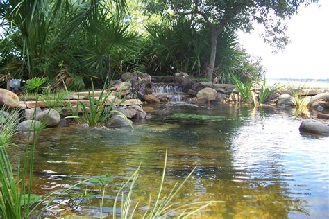 large backyard ponds triyae com huge backyard pond various design inspiration for backyard