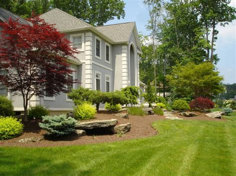 house landscaping front yard and backyard formal natural or contemporary