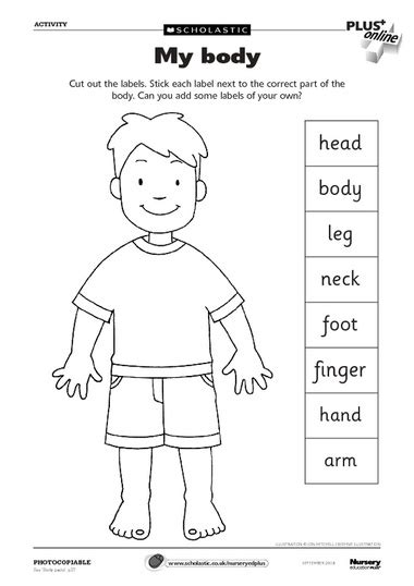preschool coloring pages my body body parts worksheet can use as a dictionary to label