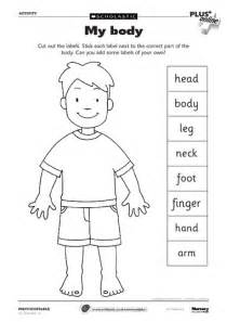 body parts on pinterest teaching spanish spanish