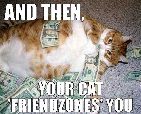 Rich Cat Meme - hallelujah maze for mobile casino with funny cat image