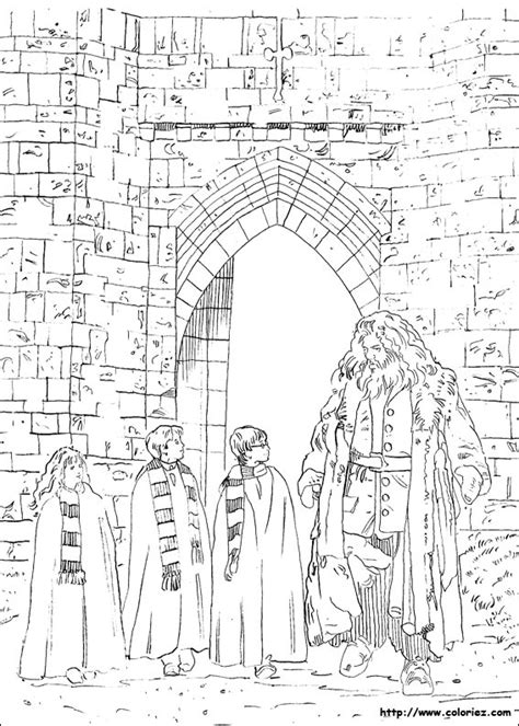 harry potter coloring pages crookshanks free coloring pages of harry and hermione