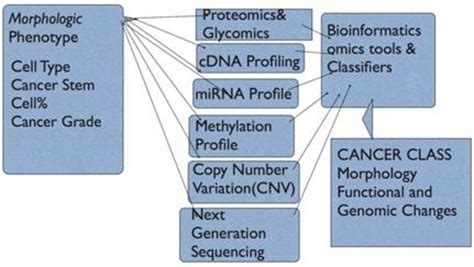Human Cancer Classification A Systems Biology Based