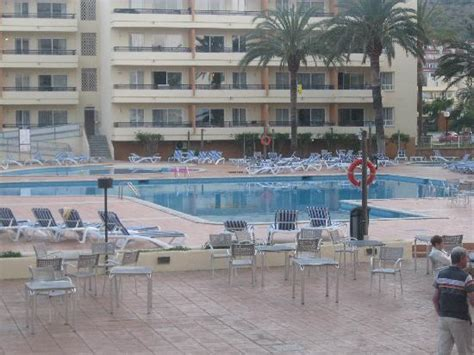Apartments Bellevue Alcudia Crest Of Alcudia Picture Of Bellevue Club Port D