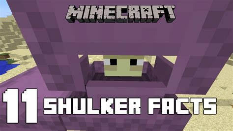25 Facts You May Not Know About Minecraft Gearcraft - minecraft 11 shulker facts you might not know youtube
