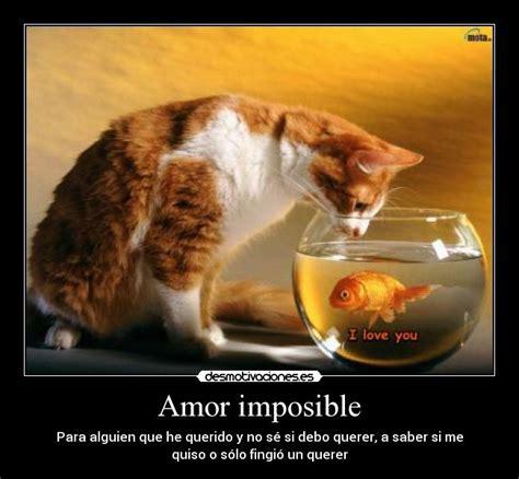 imagenes de adios amor imposible imagenes de amor imposible desmotivaciones imagui