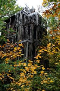 six story tree house flickr photo