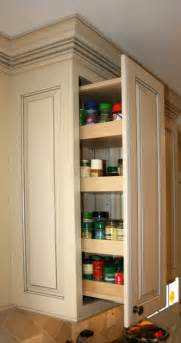 Kitchen Cabinet Pull Out Spice Rack Spice Rack Wall Cabinet Galleryhip Com The Hippest