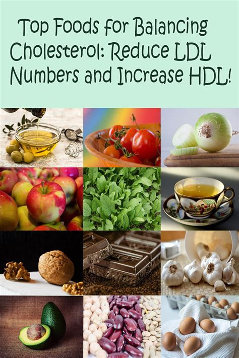 healthy fats to raise hdl cholesterol balancing foods decreasing ldl increasing