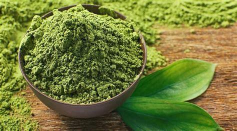 Teh Hijau Untuk Jerawat curkan kunyit dan teh hijau untuk dapatkan manfaat sehatnya health liputan6
