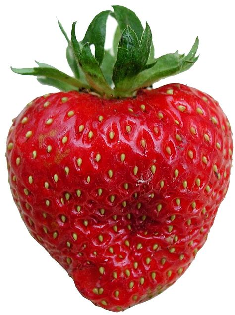 images of fruit file strawberry fruit jpg wikimedia commons