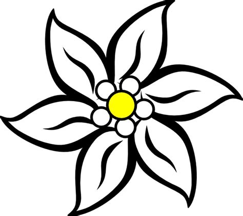 edelweiss flower coloring page free coloring pages of edelweiss