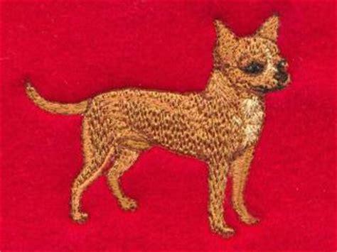 chihuahua sweater knitting pattern knitting pattern chihuahua sweater designs patterns