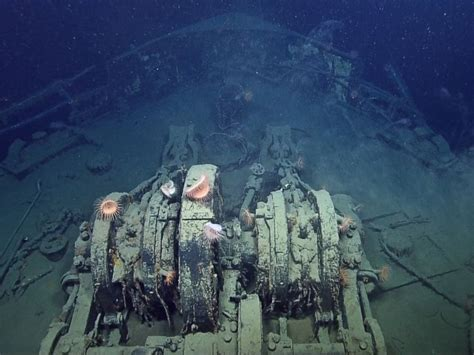 german u boat found in mississippi river awesome photos of two wwii ship wrecks u 166 and ss robert