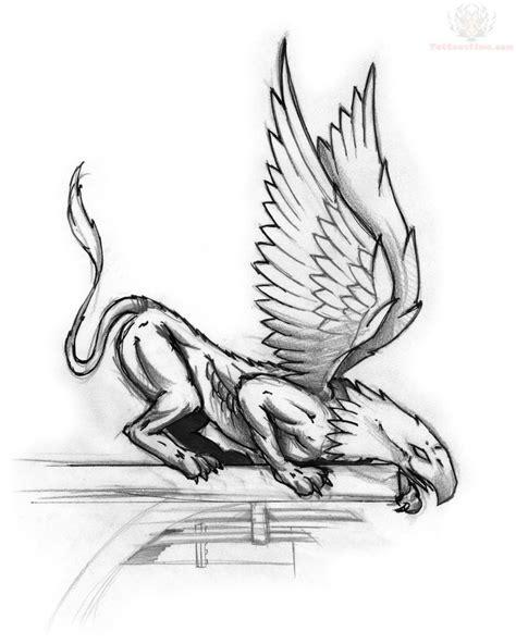 griffin tattoo designs griffin sketch design