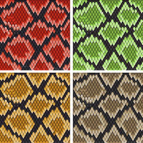 design pattern viper set of snake skin patterns for design or ornate stock